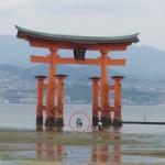 宮島の大鳥居は満潮と干潮どちらが良い?夏の厳島神社オススメ時間