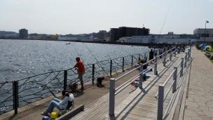 混雑している横須賀の釣り場