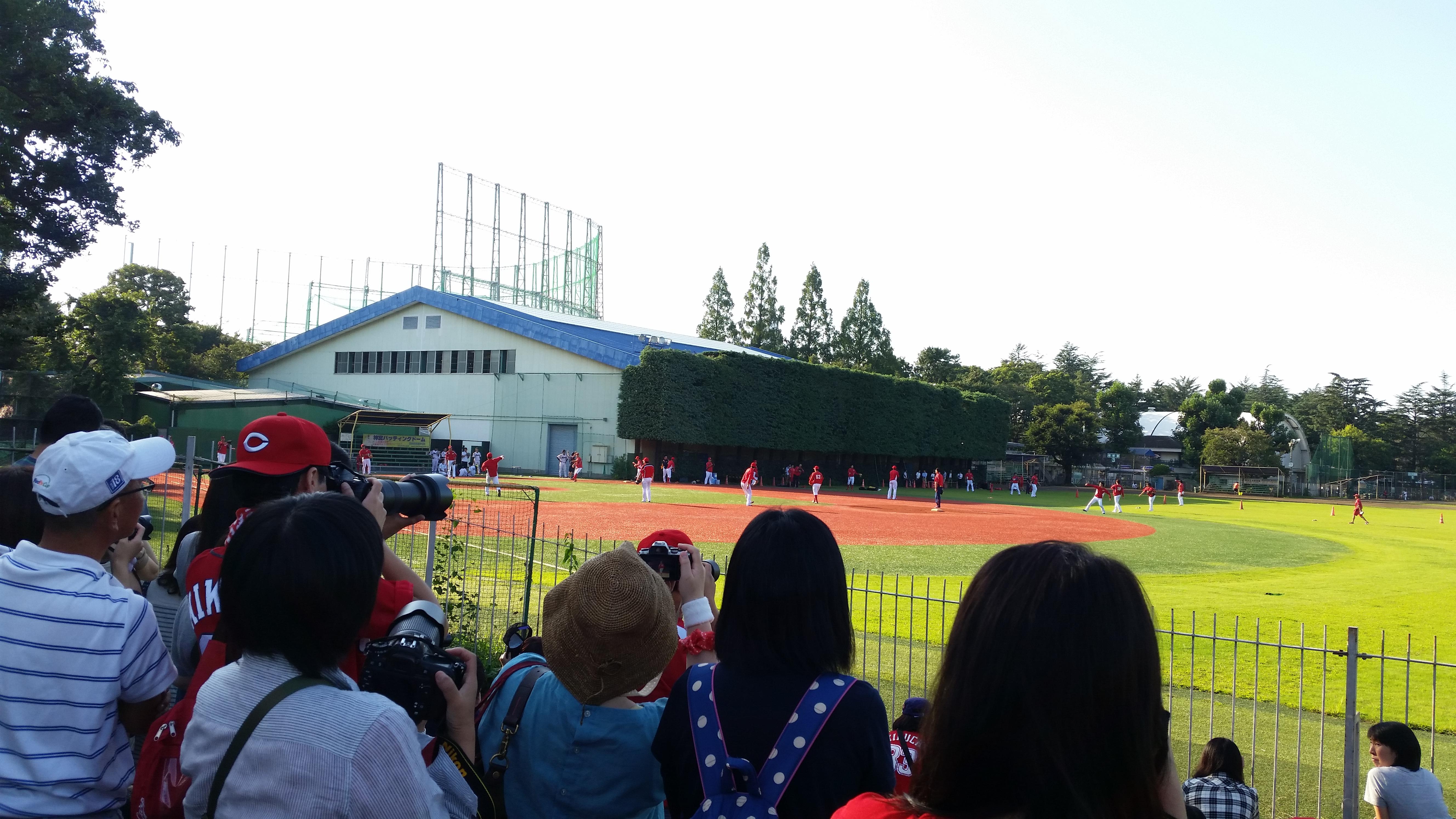 広島カープの練習を見るファン2