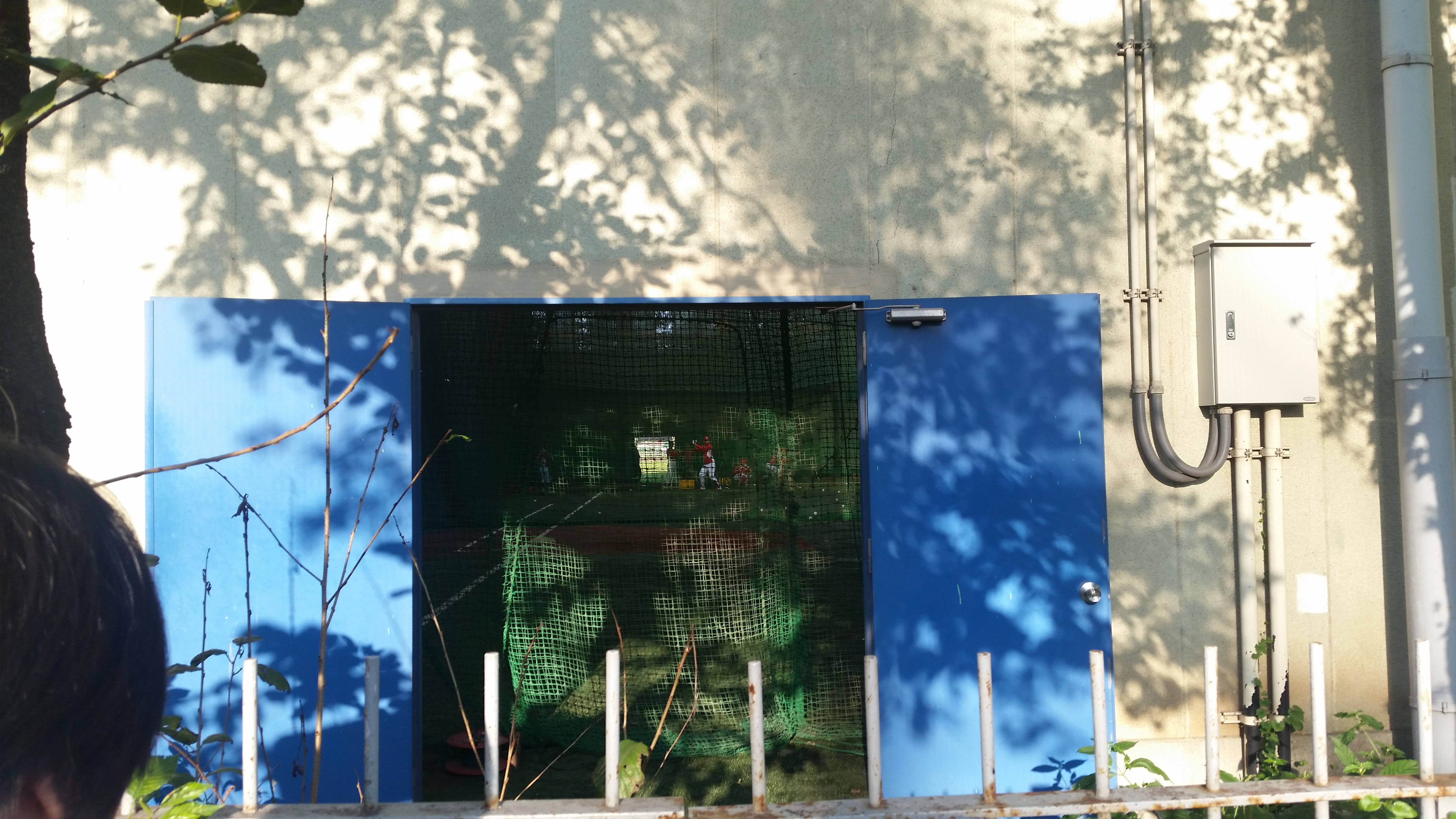 明治神宮球場で室内練習を行う広島カープ