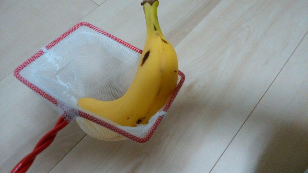 バナナを網ですくいました