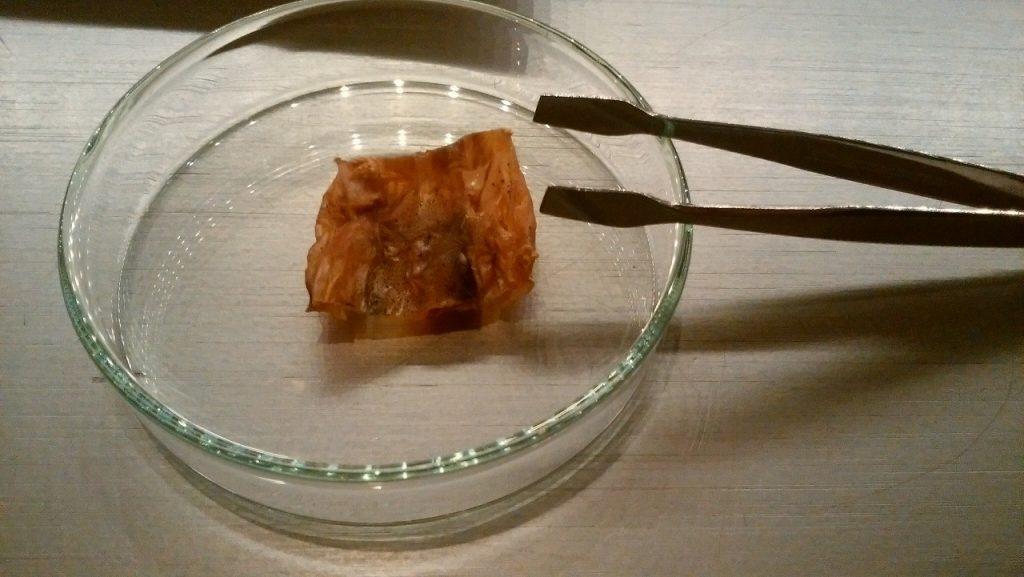 スルメを実験器具で食べる