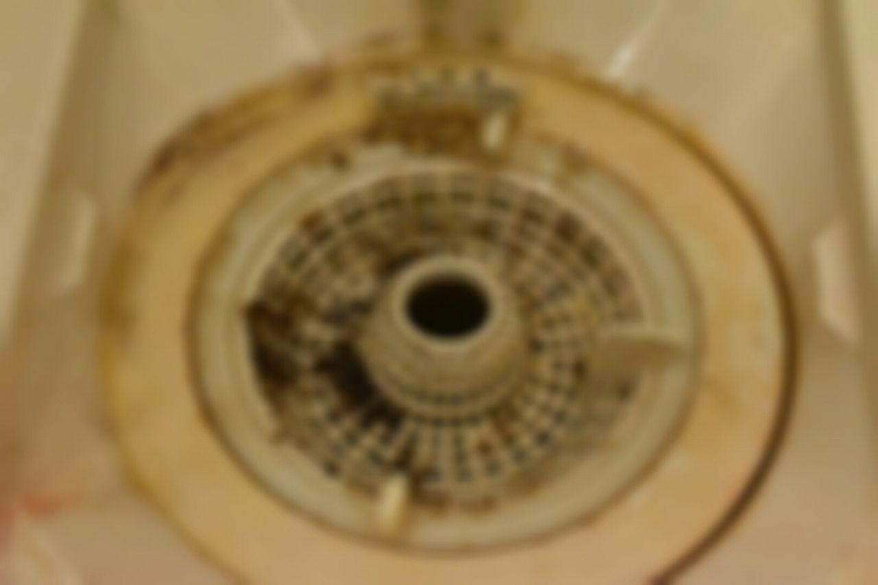 お風呂の排水溝は黒カビでいっぱい