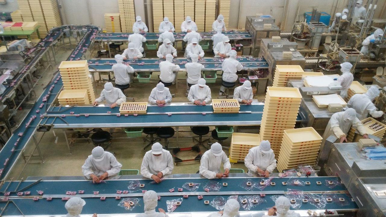 信玄餅工場見学の様子