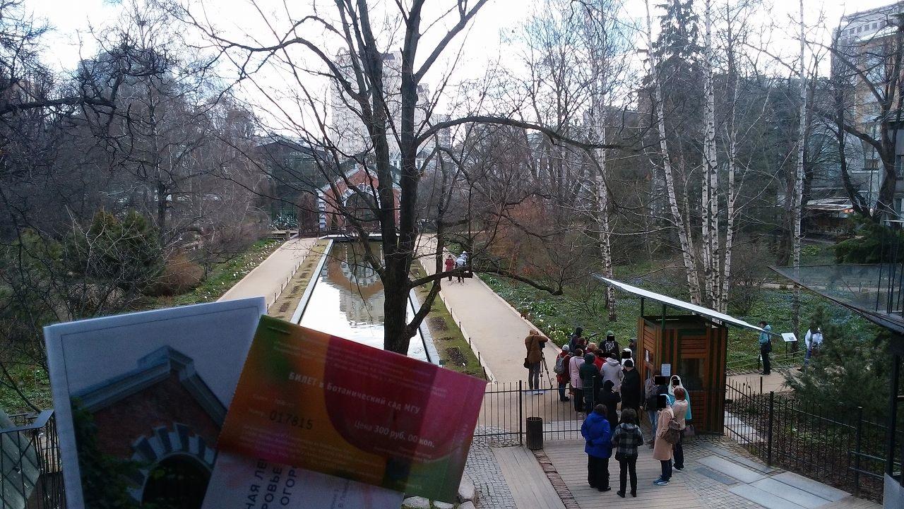 モスクワ植物園(Aptekarskiy Ogorod Botanical Garden)
