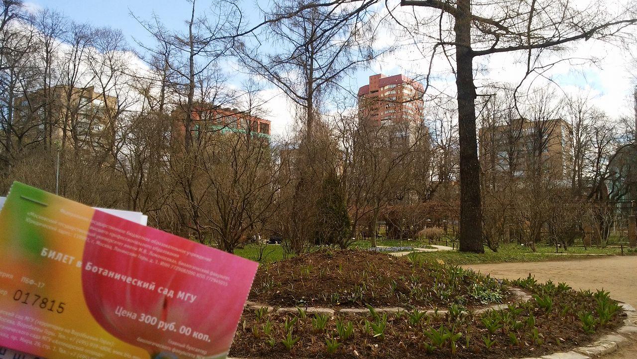 モスクワ植物園の春の様子