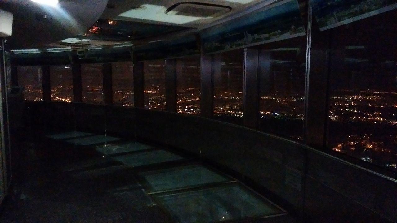 オスタンキノタワーからの眺望