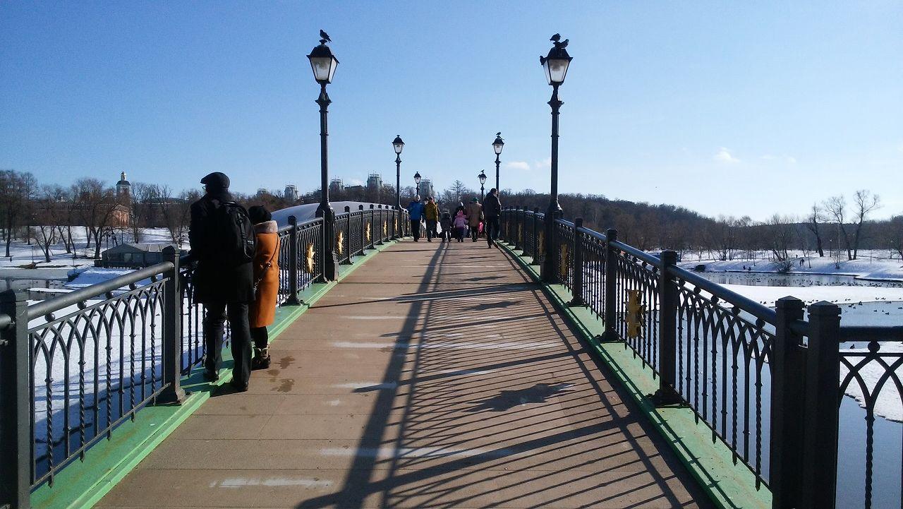ツァリツィノ公園の橋
