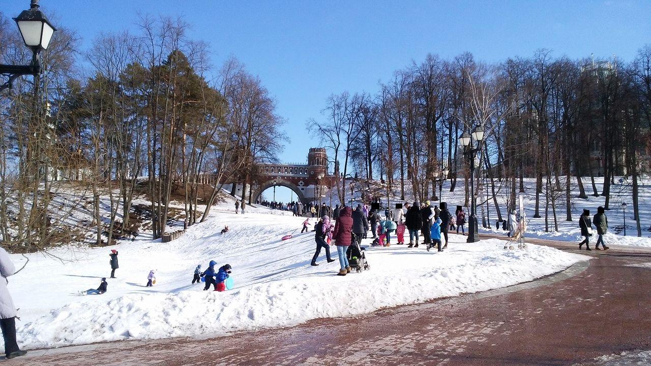ツァリツィノ公園でソリを使って遊ぶ子供