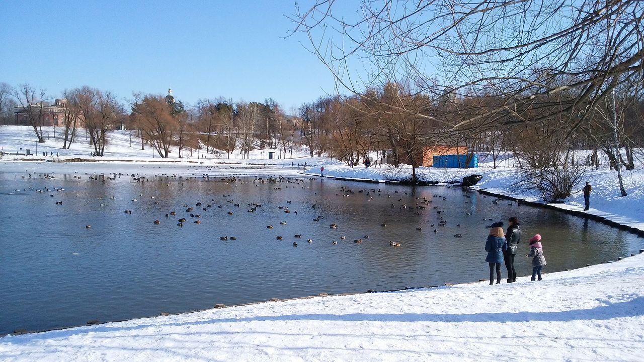 ツァリツィノ公園の湖