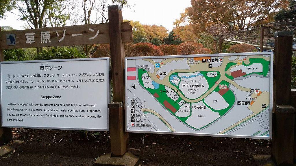 草原ゾーン